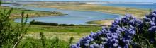 Wexford coast