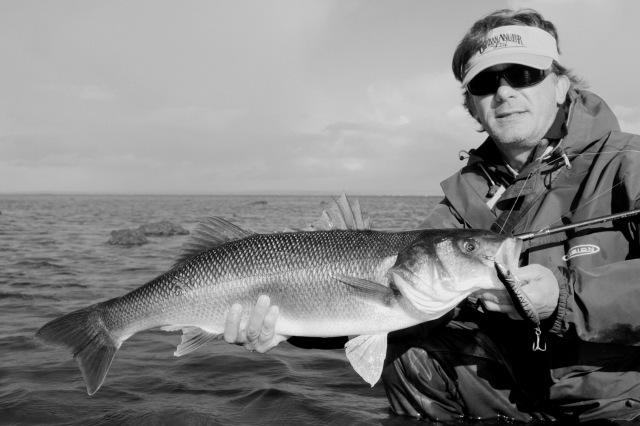 bass fishing in Ireland Thirtyards